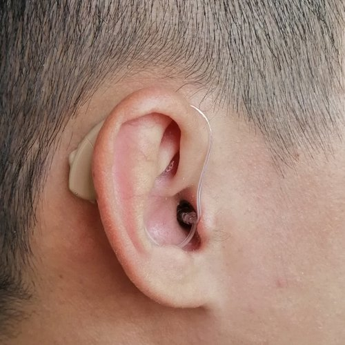 RIC digital hearing aids Supplier